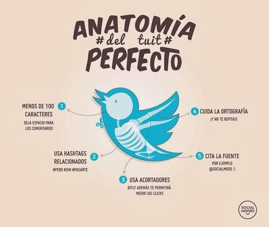 anatomia tuit perfecto